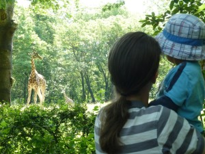 Tate and Richard checking out his favourite animal - the giraffe!