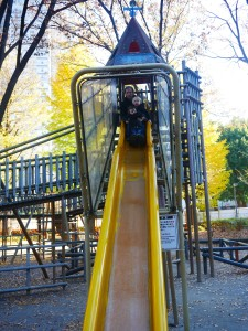 This might rival Tate's favourite slide at Billy Johnson Playground for height!